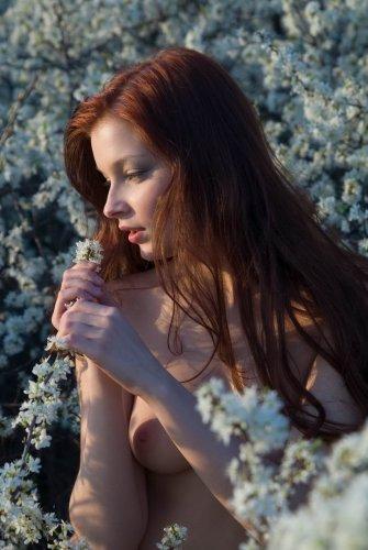 Аврора - Весна