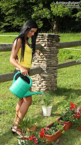 Карамельный садовод Ashley Bulgari