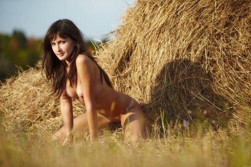 Ольга на сенокосе