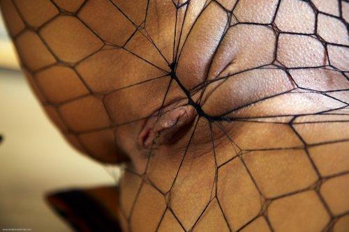Ashley Bulgari в сексуальных колготках