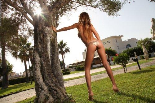 Alexa у старого дерева