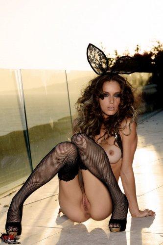 Dark bunny Malena Morgan