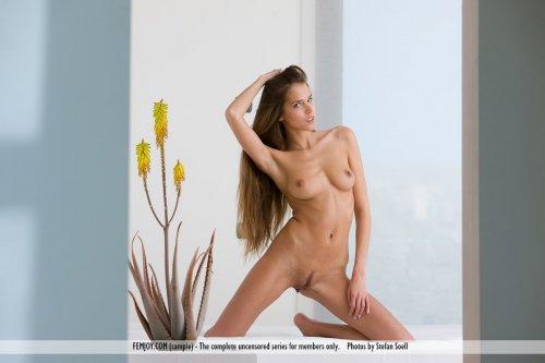 Худая модель Silvie Delux с интимной полоской без одежды на эротических картинках