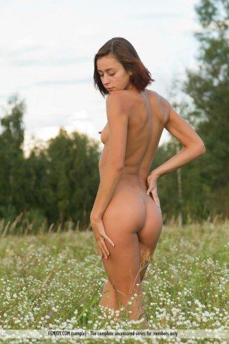 Русская красотка Lena с маленькими сисями снимает одежду в поле и фоткается