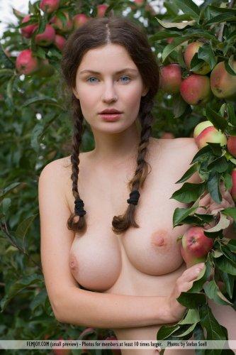 Русская баба Susann с сексуальными бёдрами голая собирает яблоки в саду
