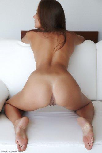 Sandra D