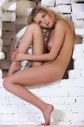 Barbara D