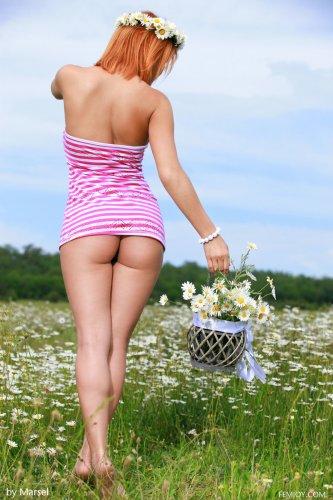 Violla A раздевается в поле с ромашками