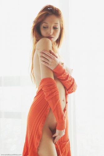 Рыженькая лисичка Red Fox встала на колени