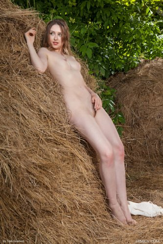 Ginger Frost