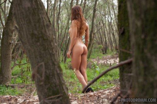 Rebecca Photodromm